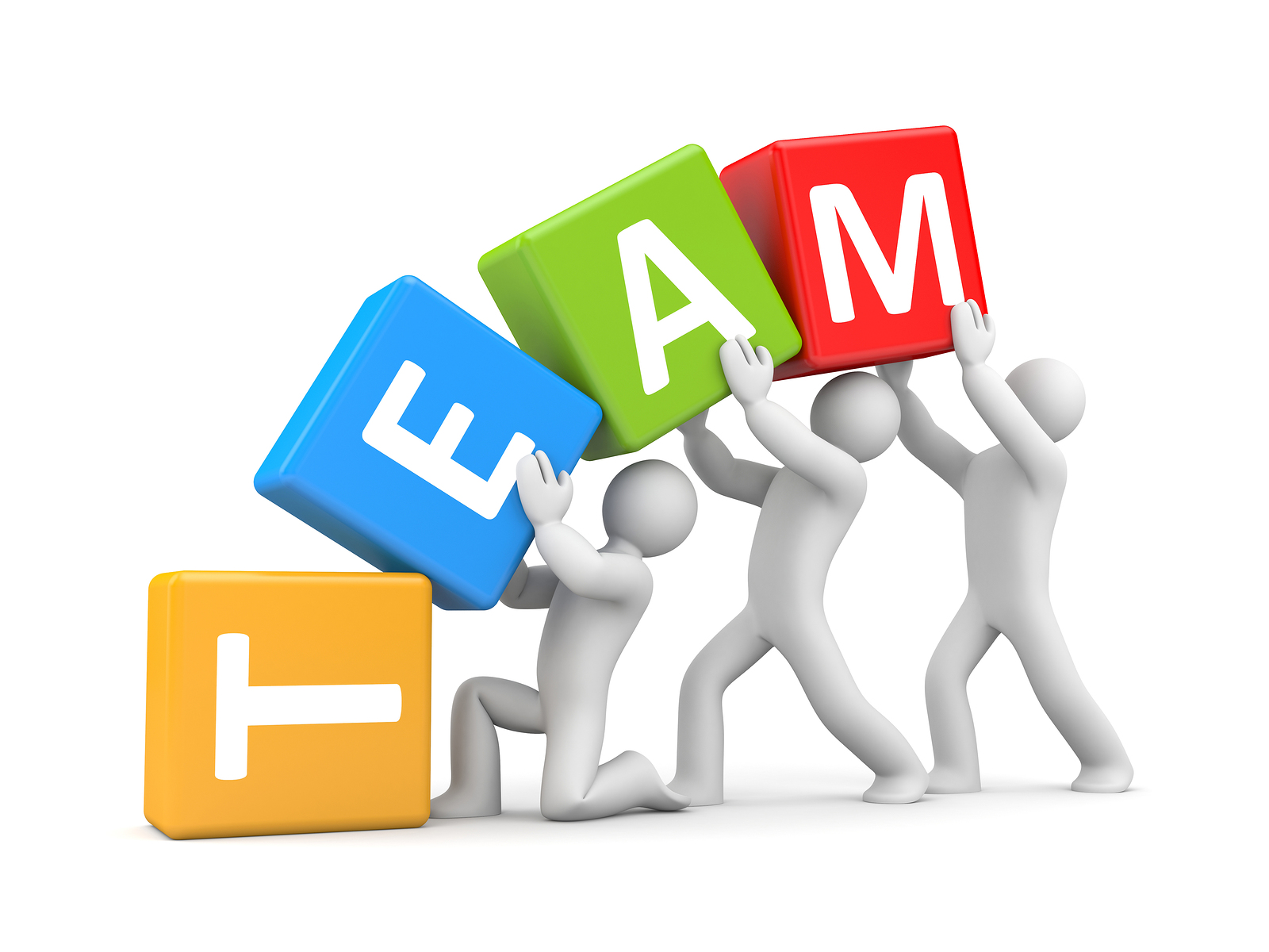 building the team This team building article details how to build a team using vision, commitment and trust--the moment you start doing anything with another person.